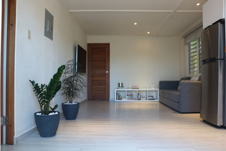 Modern 1 Bed/1 Bath in Dorado steps from the beach - Dorado - Wohnung