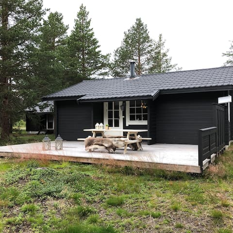Cozy Cabin 200 m from Bjorli ski center.