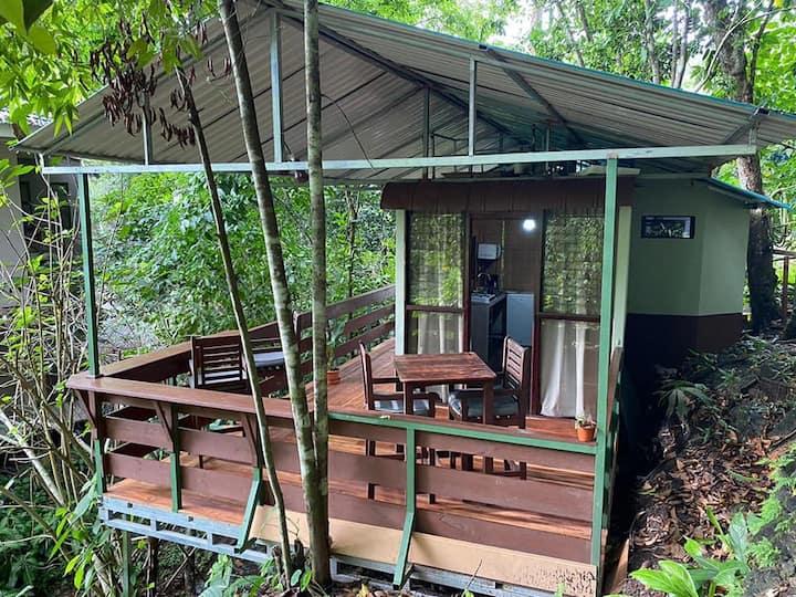 Creek Side - Cozy Jungle Apartment