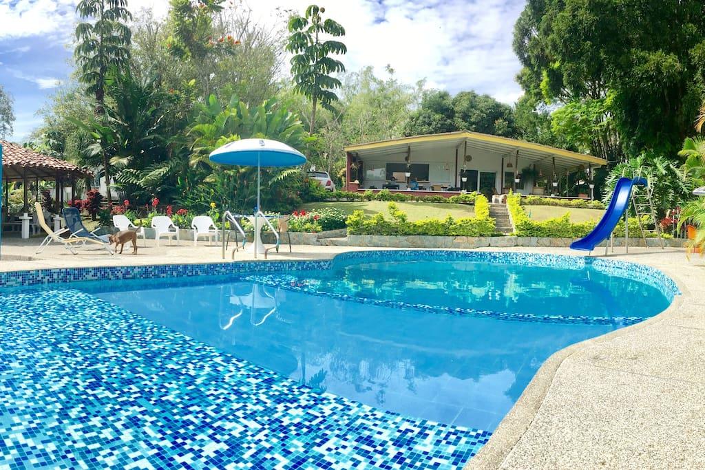 Zona de piscina con kiosco y casa al fondo.