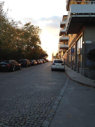 The beautiful street.