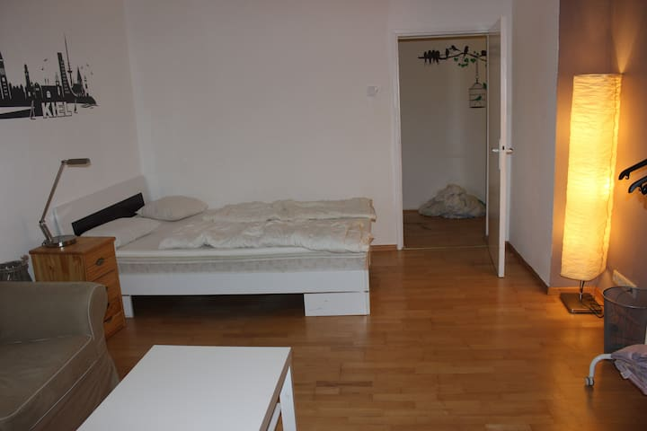 Großes Zimmer mit Wohnküche (zentrale Lage)