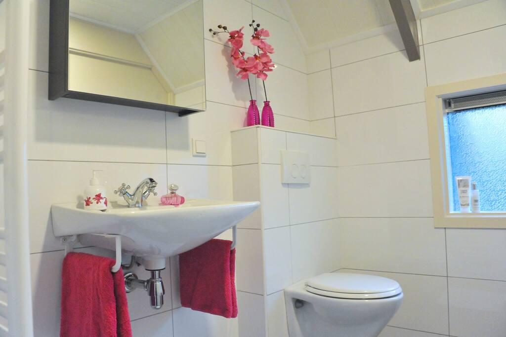 Badkamer beneden met toilet