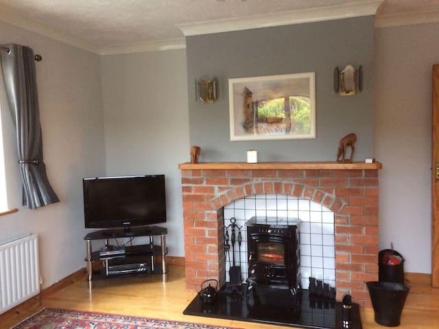 Back living room/ TV Room