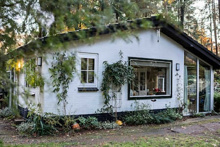 Romantic forest cottage in the Veluwe