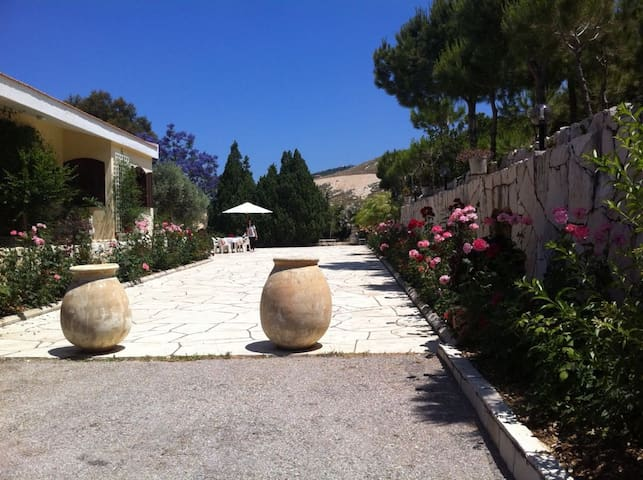 Villa in Jbeil with Garden and Pool in the summer - Byblos - Willa