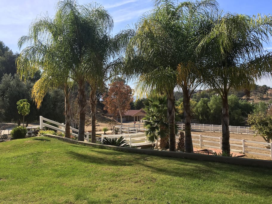 This beautiful horse property with gate is sitting on 2.5 acres land.