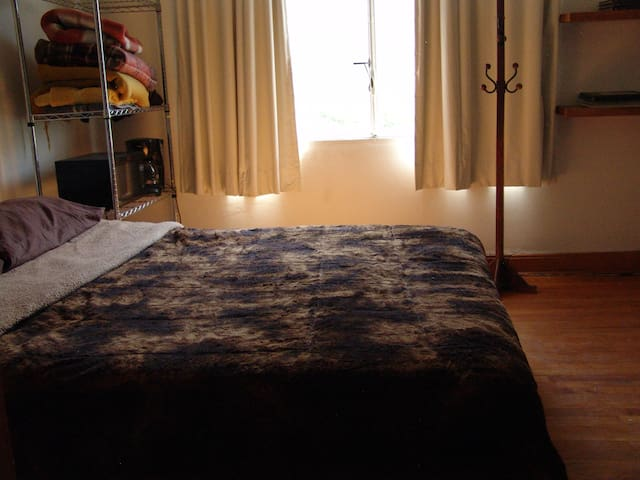 Great room for you in Condesa