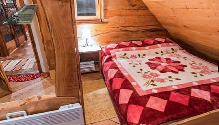 Eco-economy Orlov put - Room 3 for 2 people SPRUCE