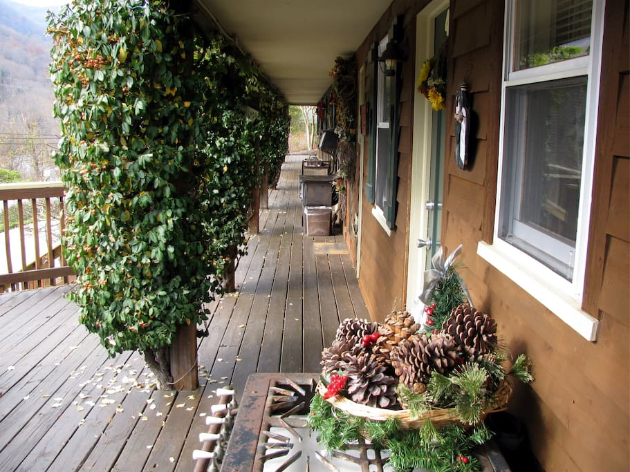 Greening of the Deck