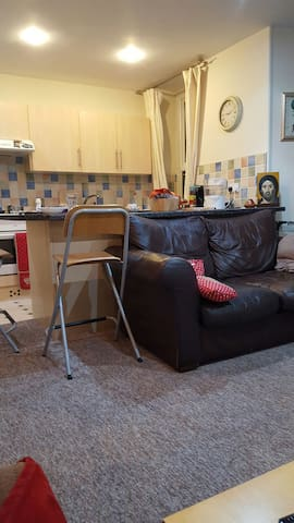 Lovely,cosy flat in Cardiff - Cardiff - Lakás