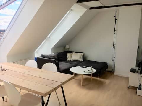 Small cozy city apartment