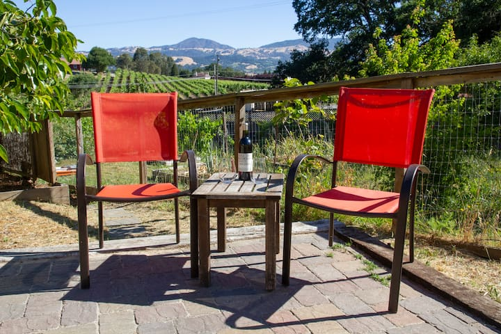 Alexander Valley: Wine Lover and Cycling Paradise