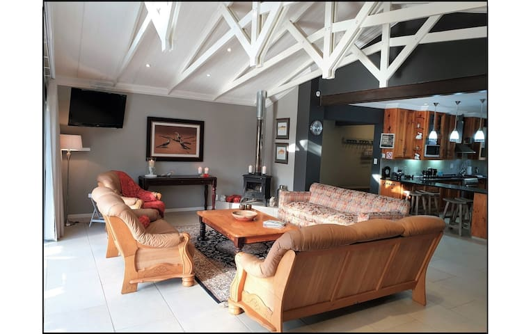 Lounge area with fireplace and DSTV.