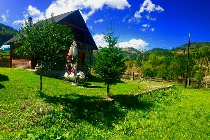 cozy wooden house with a beautiful view