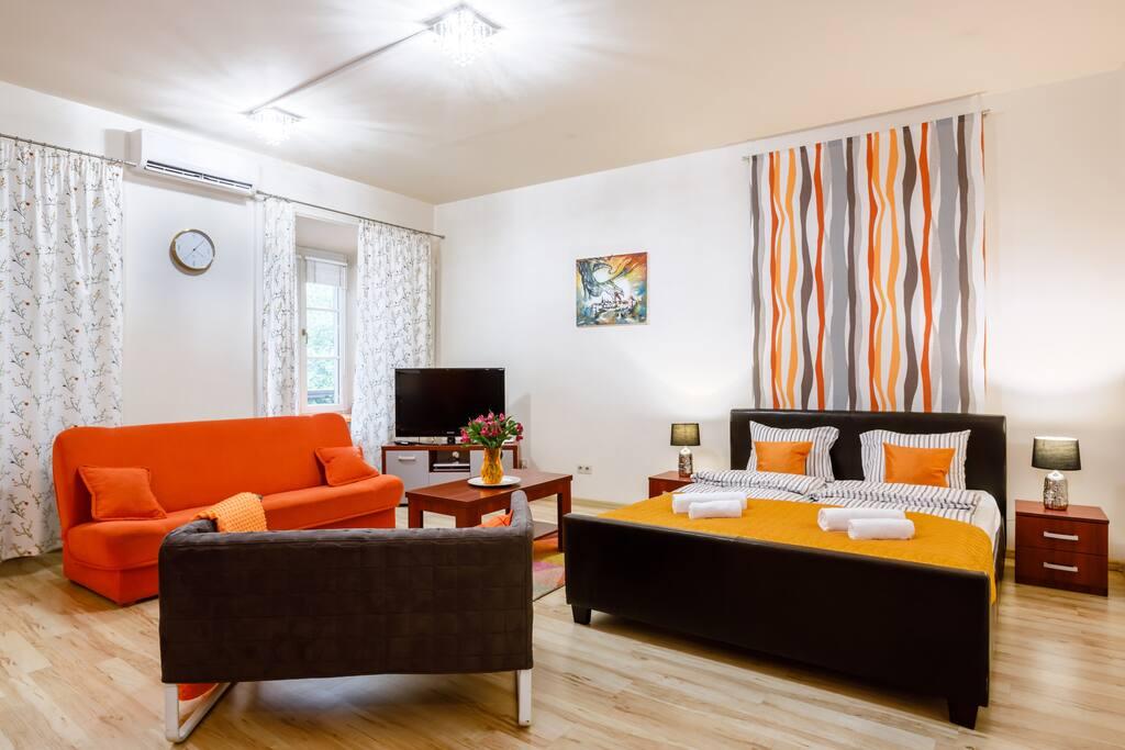 Big Studio Apartment