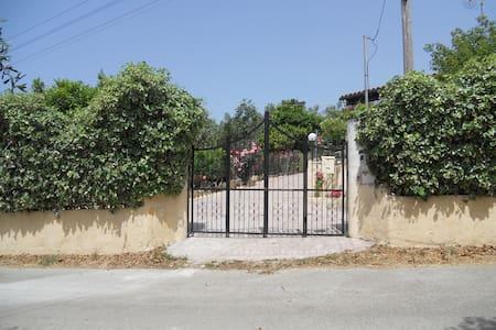 Villa Effi - Chalikounas - Ev