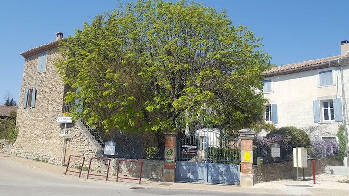 Chambres d'hôtes, Mt Ventoux, 1 à 10 personnes