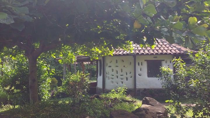 """Finca Mystica : Private Cob Cabin  """"Casita Pitaya"""""""