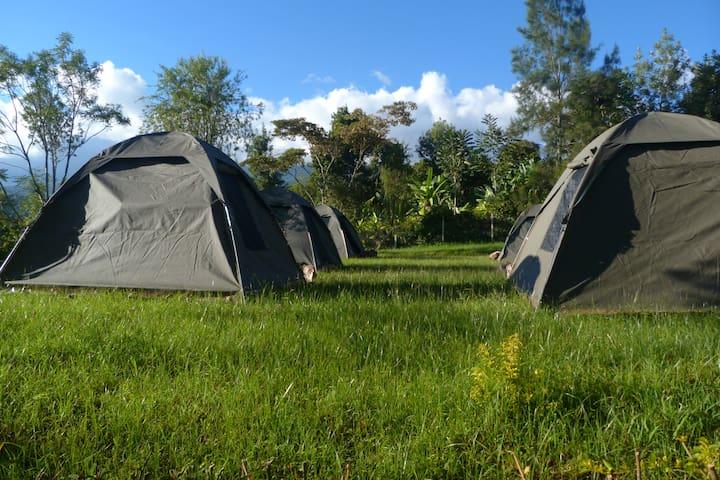 Kahawa Shambani Camp