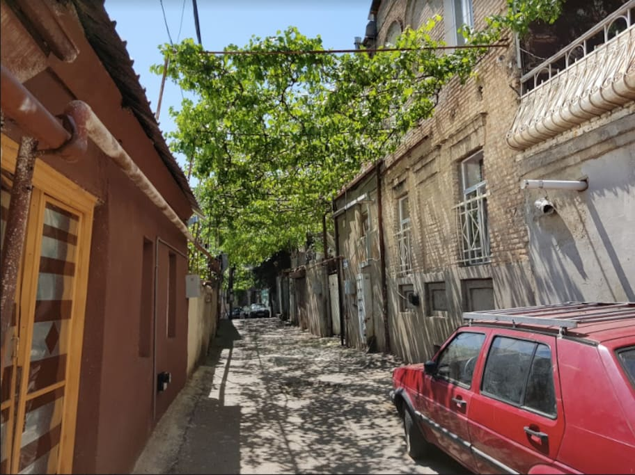 this is our beautiful and very quite street - only us and the grapes :)