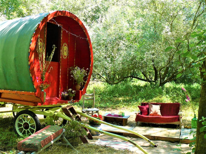 The Bowtop Gypsy Wagon