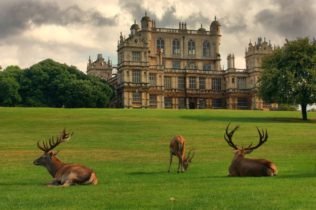 Wollaton park (Batman movie was filmed )