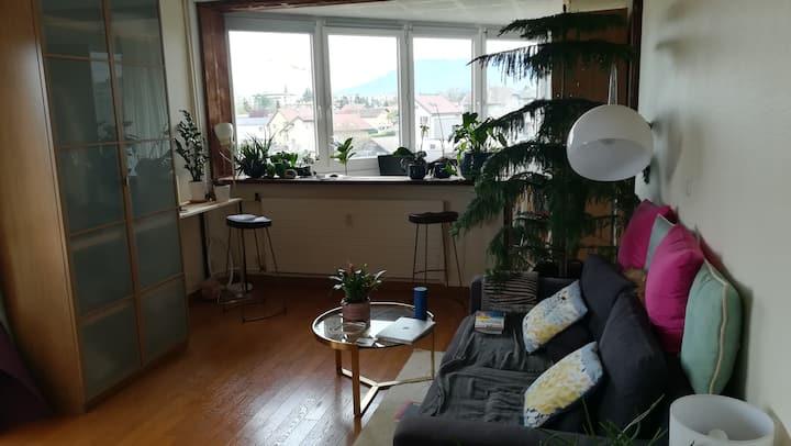 Appartement à Gaillard
