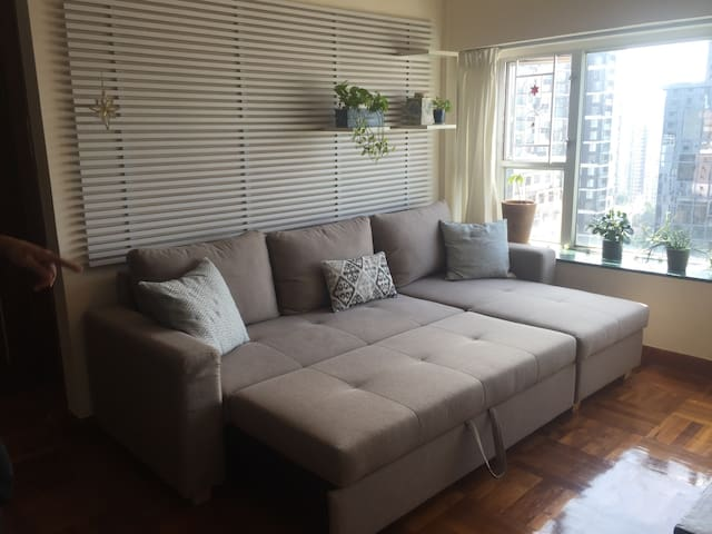 Our new sofa that turns in a comfy sofabed