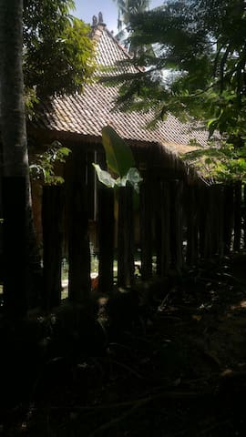 Wooden house with jungle &ricevield - ubud - Villa