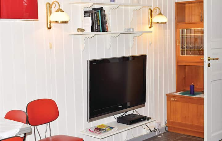 Awesome apartment in Røros with WiFi and 3 Bedrooms