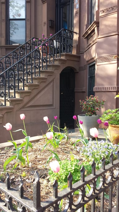 Garden apartment in the heart of brownstone Brooklyn
