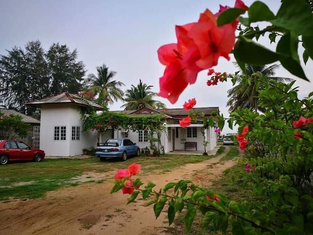 ALA Beach Lodge Homestay