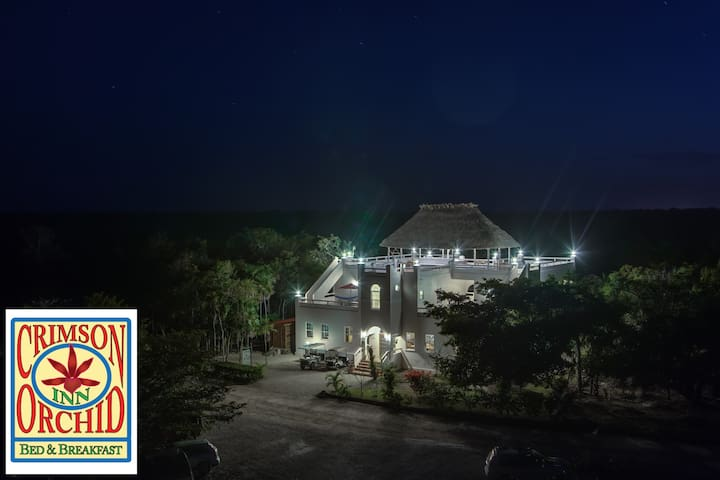 The Crimson Orchid Inn, Orchid Bay - Corozal, Belize - Oda + Kahvaltı