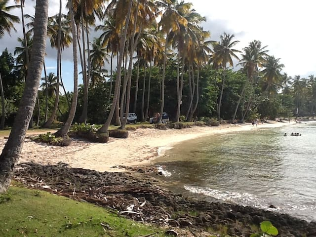 Apartment front ocean - Las Galeras - Appartement