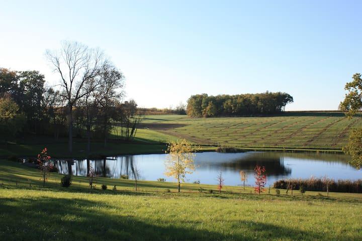 Périgord:Chambre 4 à 6p à la campagne avec piscine