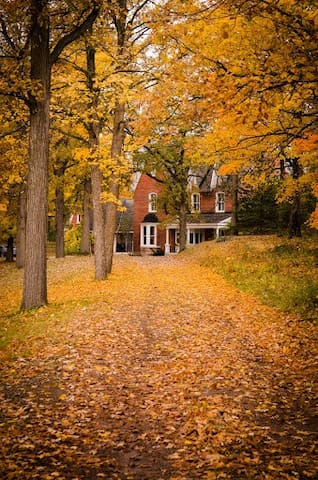 Fall view from Driveway