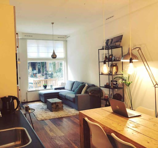 Lovely apartment with garden next to Vondelpark