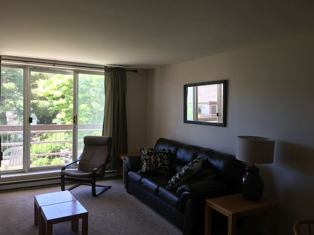Sunny One Bedroom Condo-Warren, V T- Pet Friendly