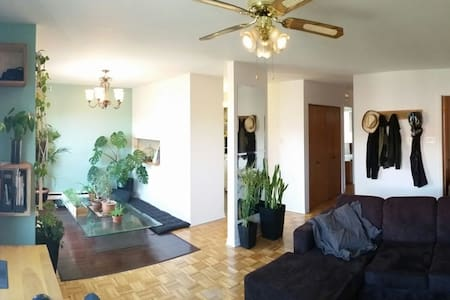 Sunny and calm apt in HoMa district - Montréal - Appartement