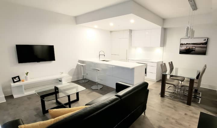 beautiful fully furnished condo (pets friendly)