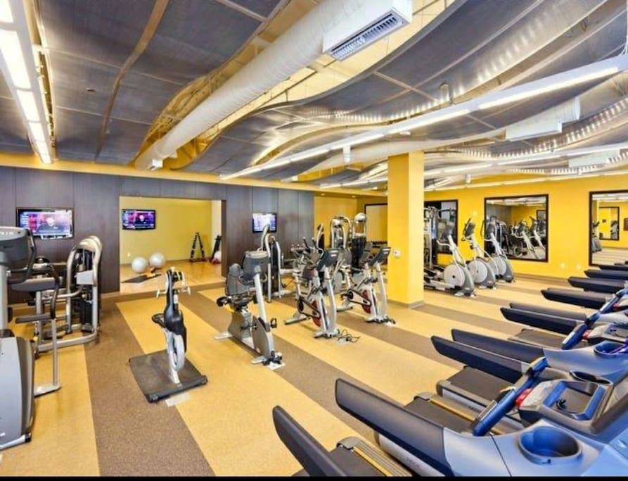 Gym / Yoga studio
