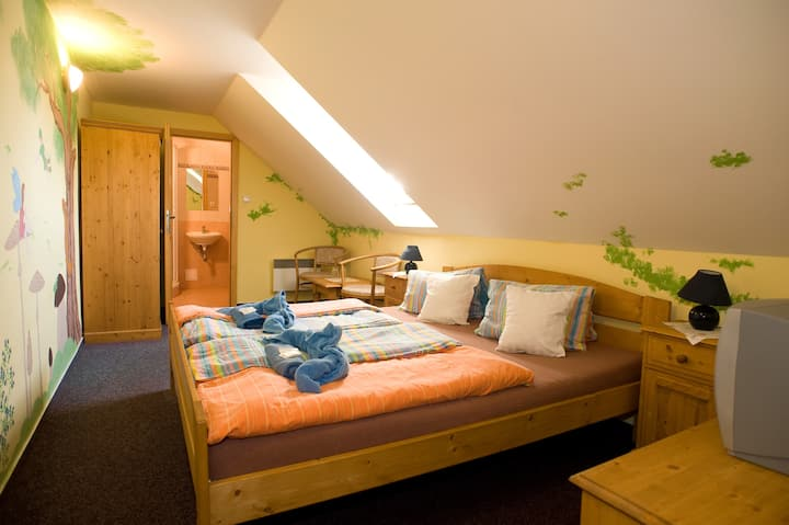 Barevný pokoj pro 2 na samotě u lesa