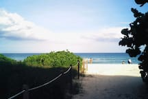 beach accross Collinsw