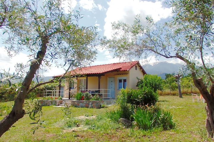 Olive grove cottage close to Sea & Mt Olympus