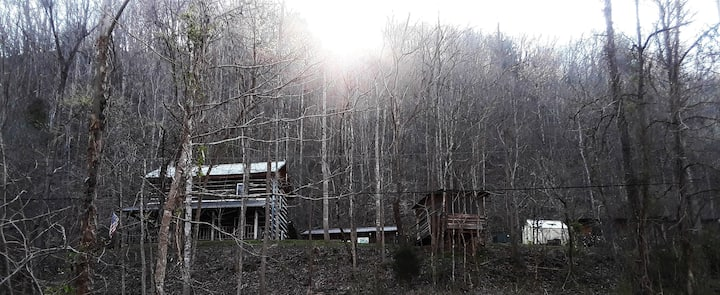 Historic 1830 RoseHill Cabin by French Broad River