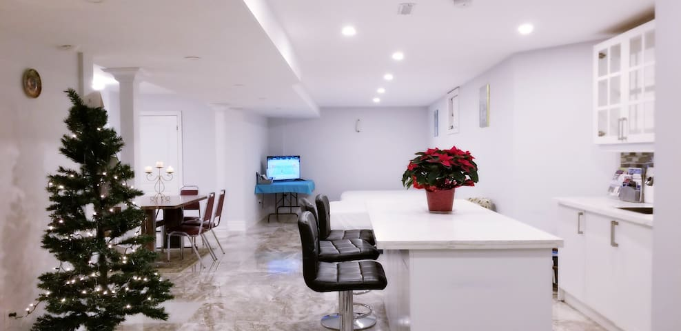 LUXURY APARTMENT BASEMENT Yonge Str. Free Parking