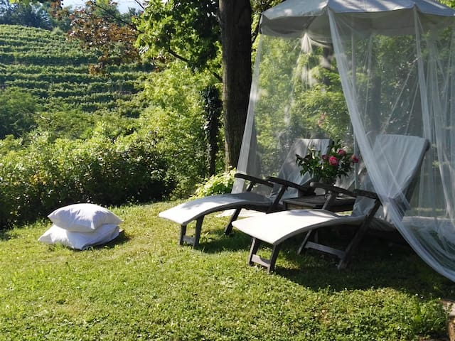 Beautiful rooms in Asolo's hills