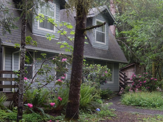 Garden Suite-Chalet by Mt. Rainier - Ashford