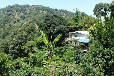 The Getaway  Blue mountains Jamaica - Blue mountains - Bed & Breakfast